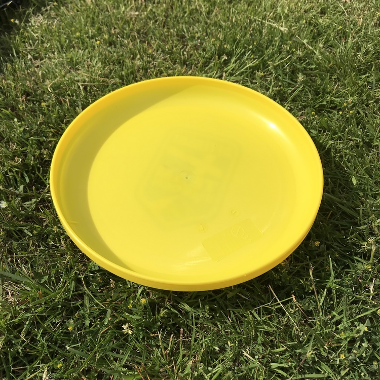 Frisbee - Summer Survival