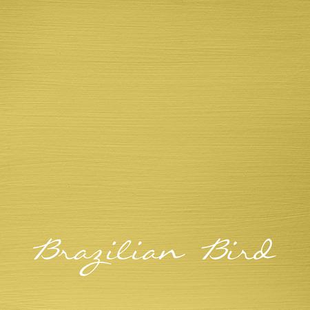 "Brazilian Bird ""Autentico Versante"""