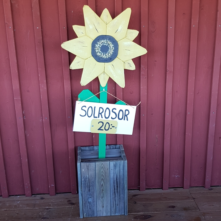 "Solros i trä ""Sunflower"""
