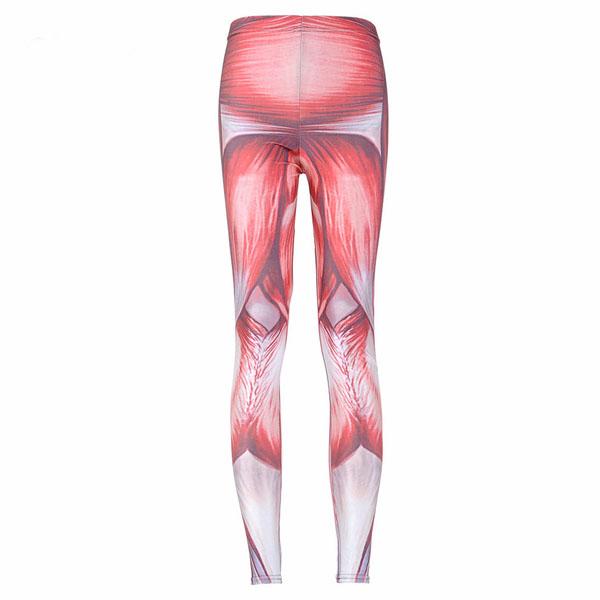 Muskel Leggings