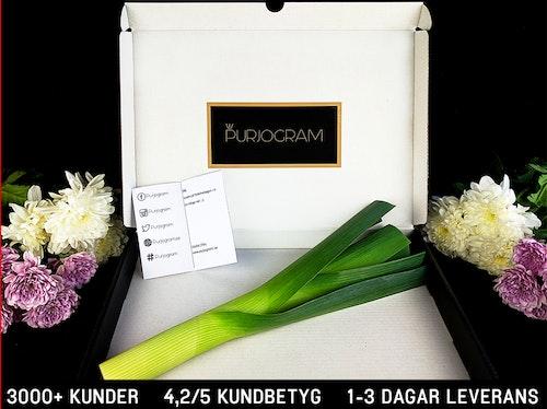 Purjogram - Ett Lökigare Blombud
