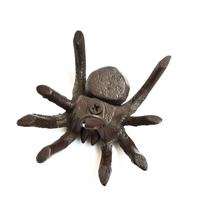 Lilla Täppan spindel
