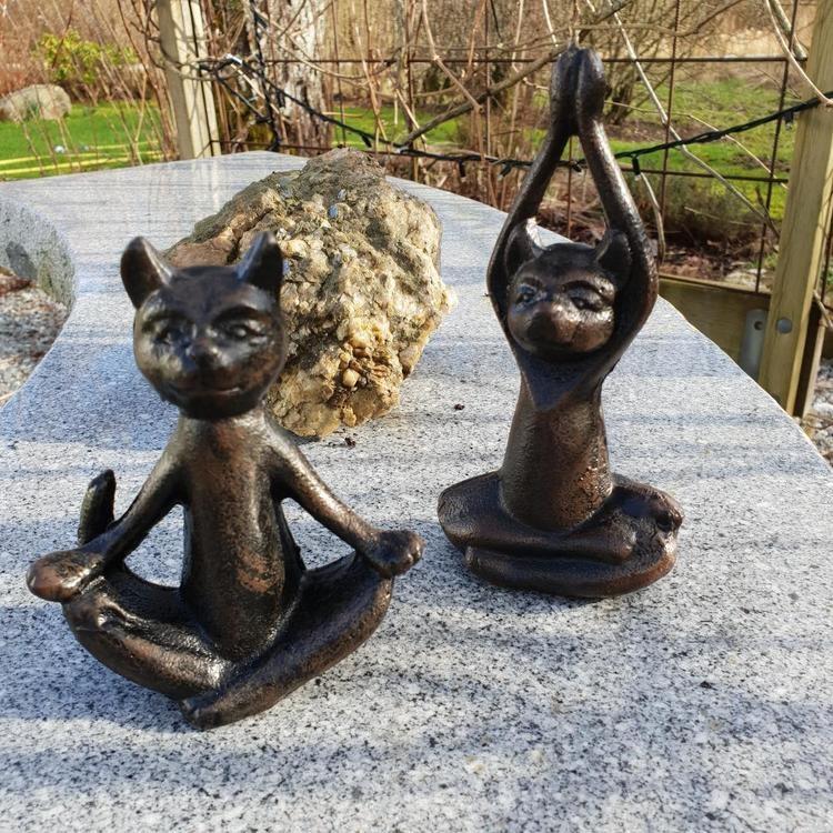 lilla täppan katter i yogapositioner