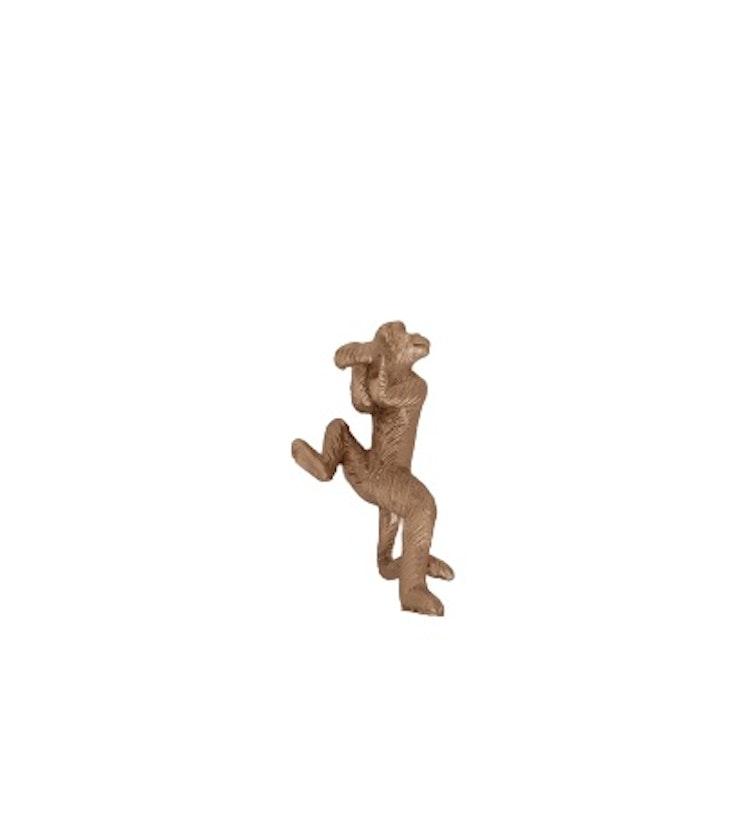 Hängande apa att hänga på blomkruka.