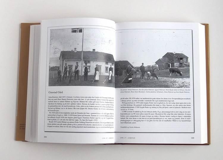 Gårdshistorie Bø, bind 2 (Fra Litløy til Skårvågen)