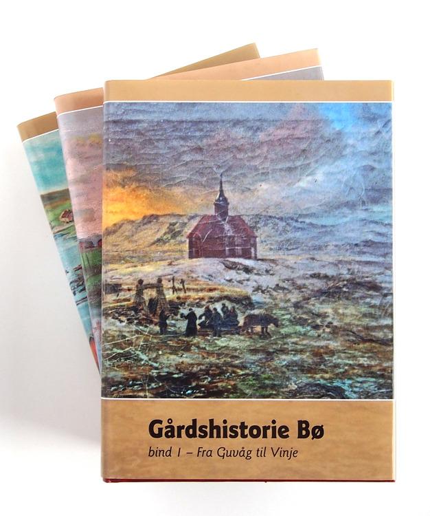 Gårdshistorie Bø (bind 1, 2 og 3)