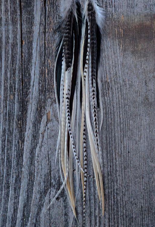 XX-Långa Fjäderörhängen par #2073