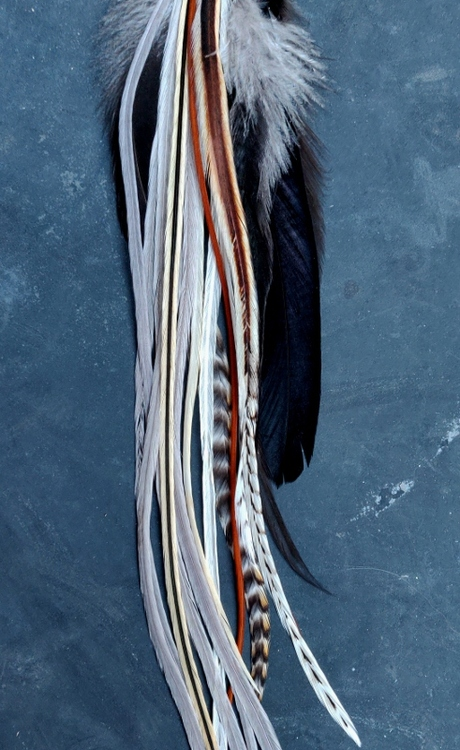 XXLong Feather Earring Single #2008