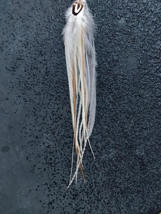 XXLångt Fjäderörhänge Singel #2029