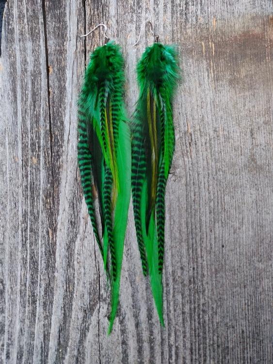 Long Pair of Feather Earrings #2099