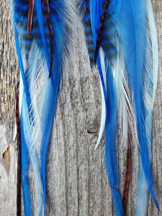 Long Feather Earrings #2111