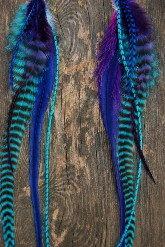 Feather earrings Jam