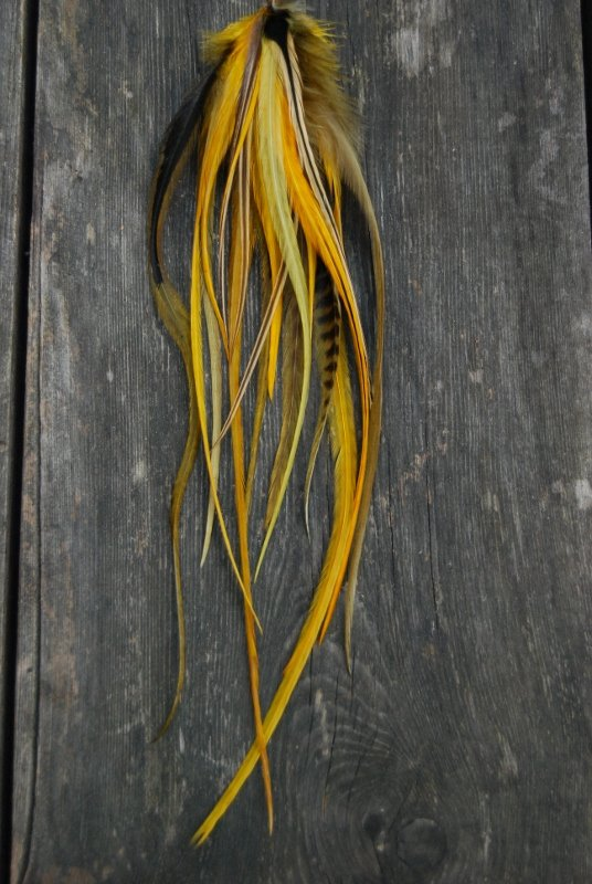 Honey Feather earring