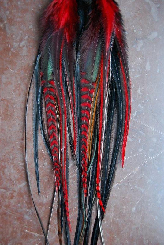 Heart Feather earrings