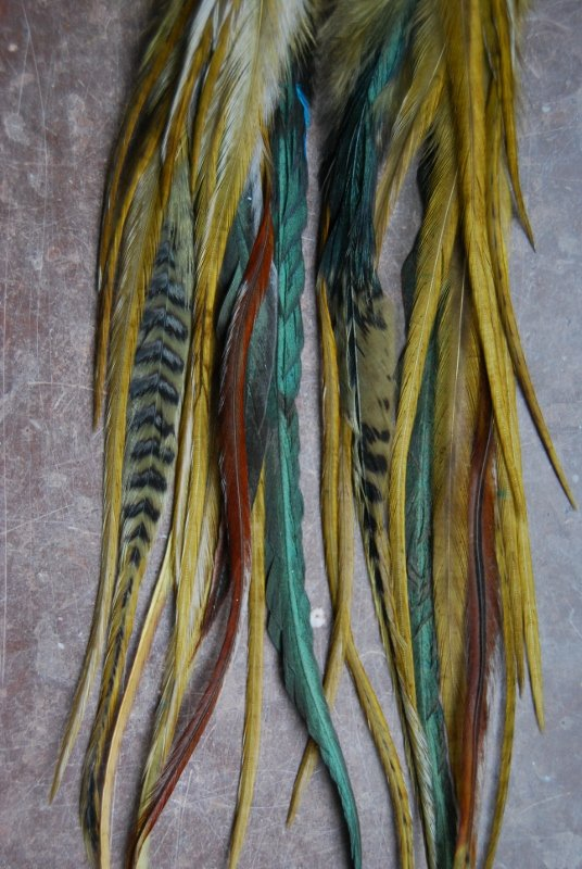 Later Gator Feather earrings