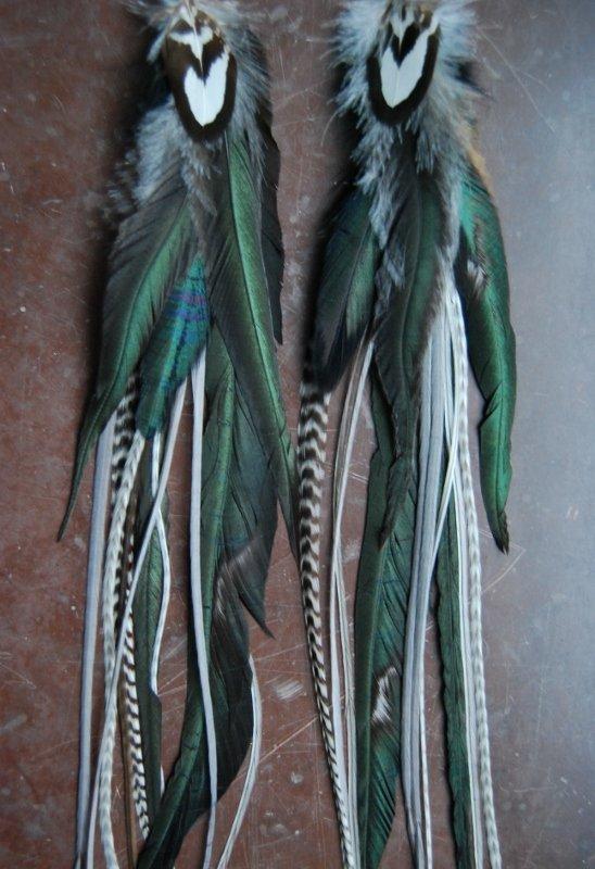 Stark Feather earrings