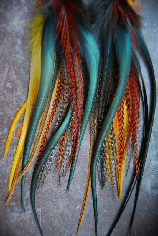 Va va voom Feather earrings