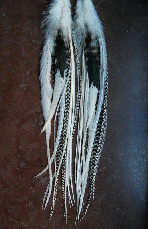 Boo Feather earrings