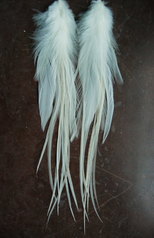 Pure Feather earrings