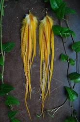 Energy Feather earrings