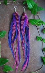 Jam Feather earrings