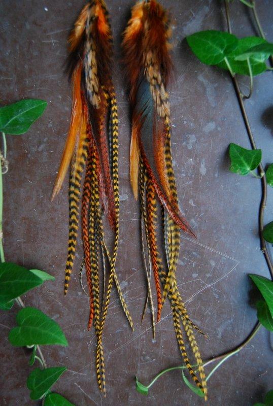 Hey Pumkin Feather earrings