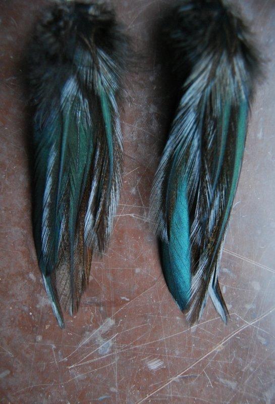 Bliss feather earrings