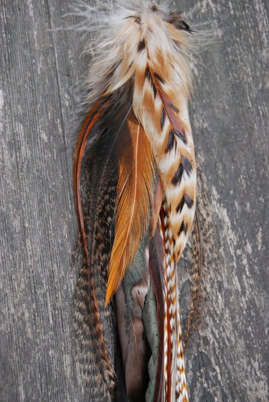 Red fox single feather earring