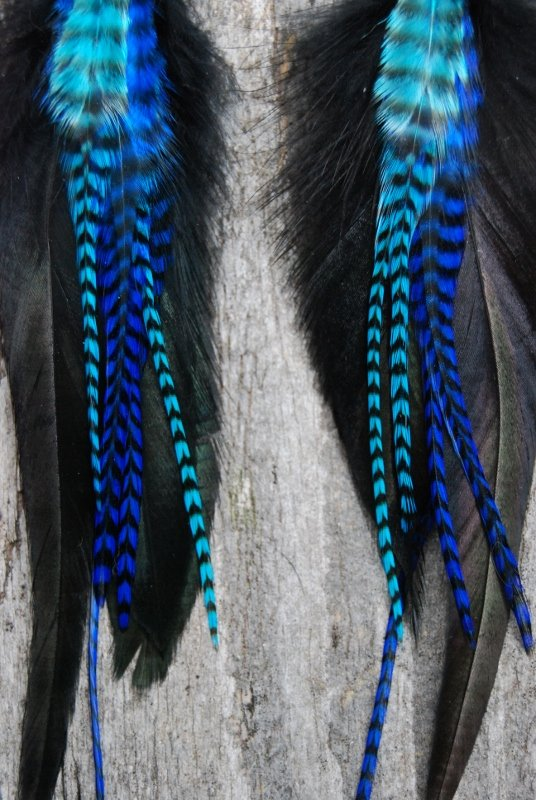 My oh my feather earrings
