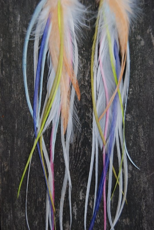 Light up my day feather earrings