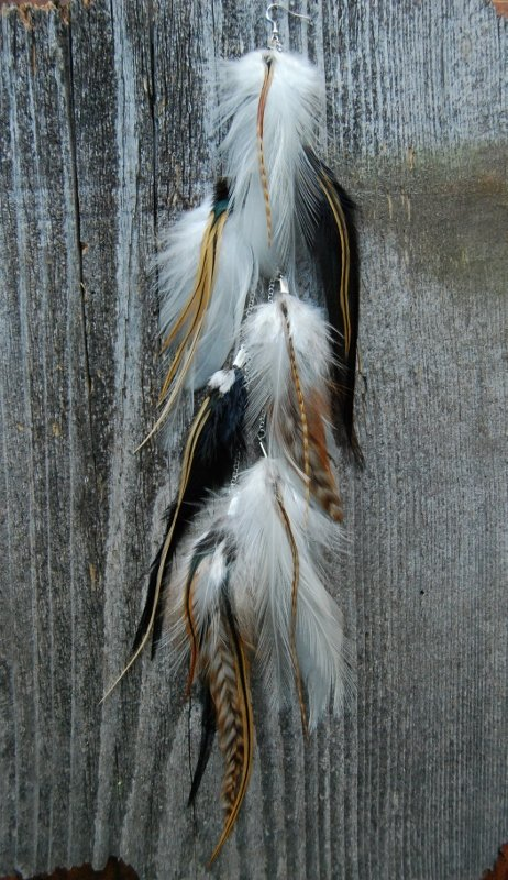 Whimsical Feather Earring