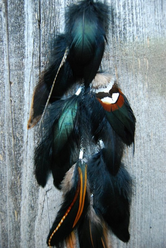Bungalow Feather earring