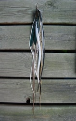 Grounded Single feather earring