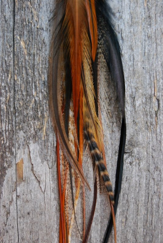 Nature Single Feather earring