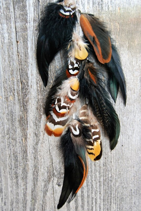 Into the wild Feather earring