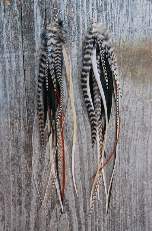 Mix Feather Earrings
