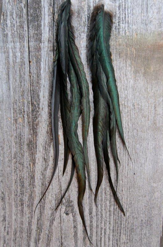 Elisif Feather Earrings