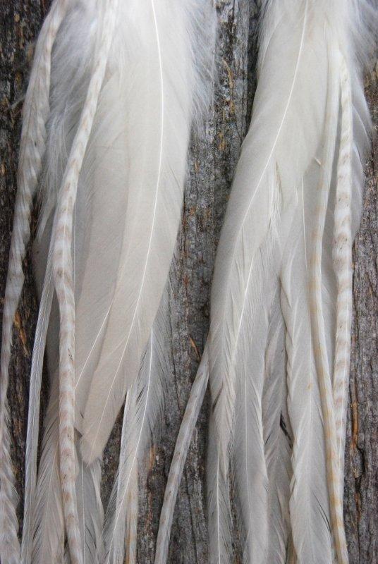 Spirit Feather Earrings