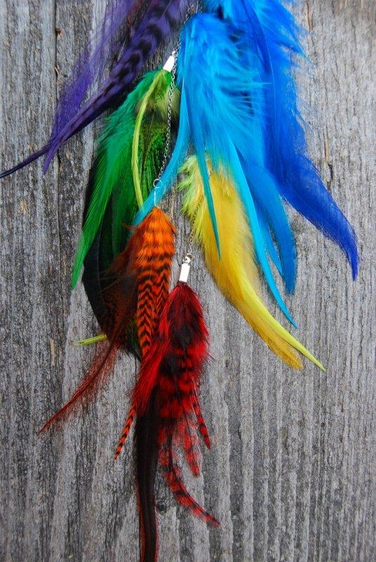 Charkra Feather earring #1