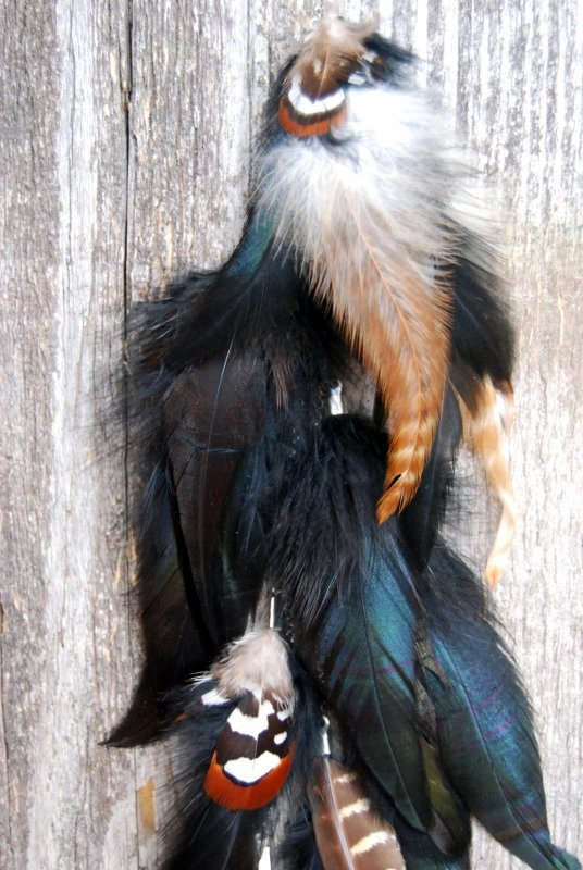 Wild thing Feather earring