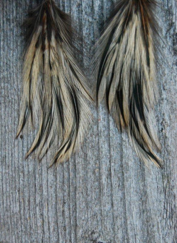 Flair Feather Earrings