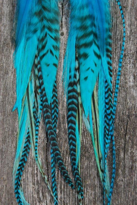 Calm Feather earrings