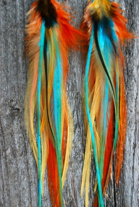 Tropical Feather earrings