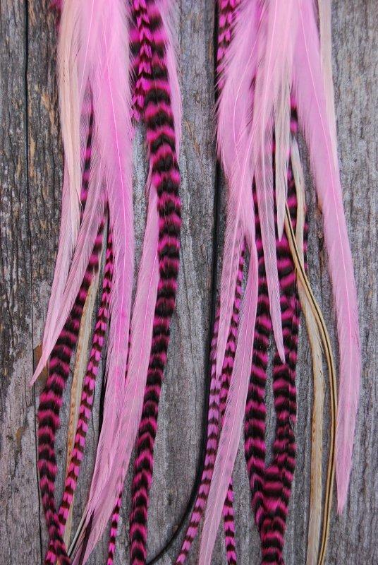 Pow Feather earrings