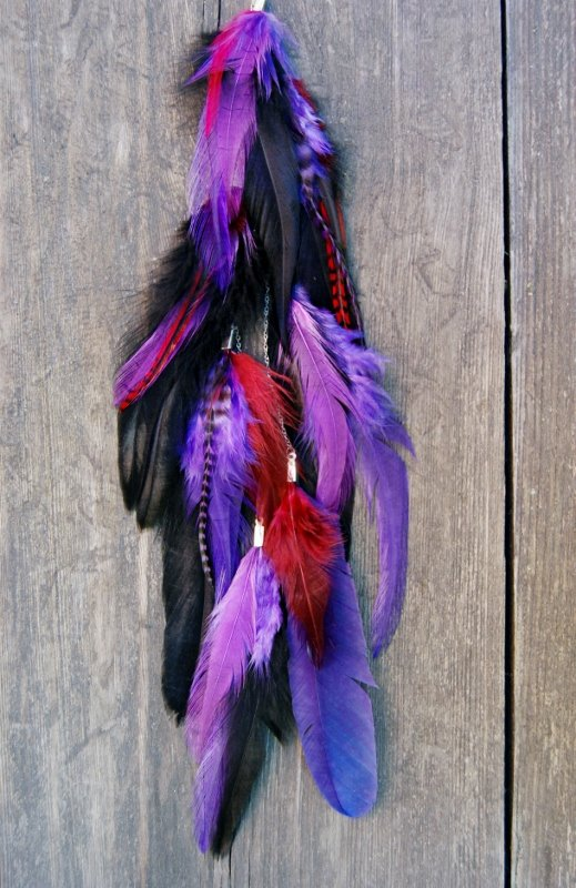 Mysterious  Feather earring