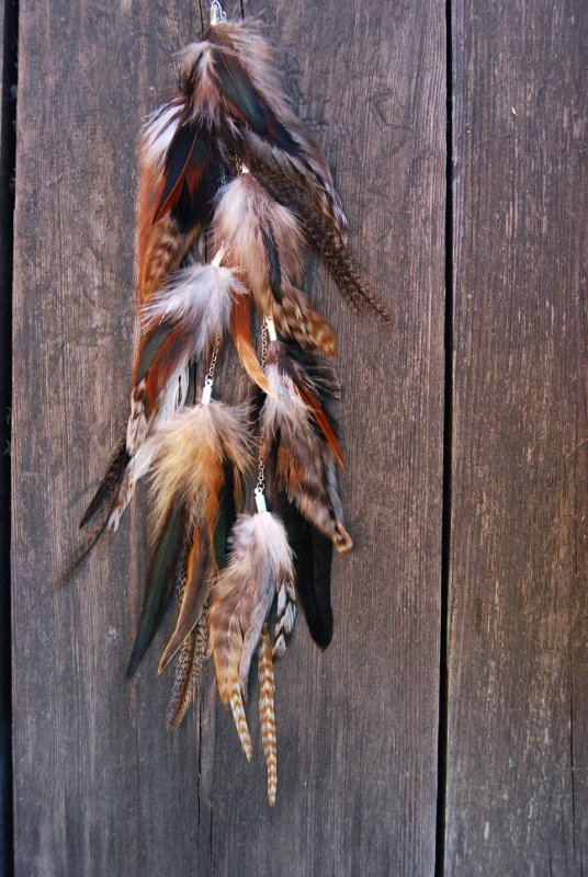 Nature #4 Feather earring