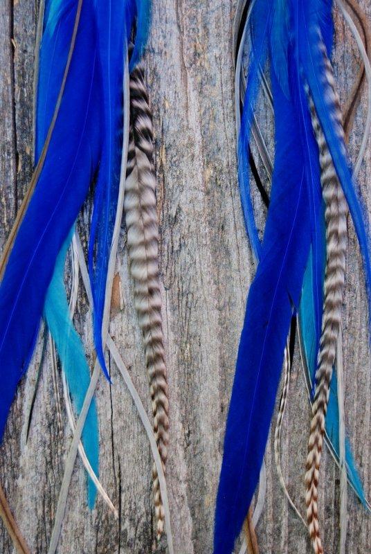 Lagoon Feather earrings
