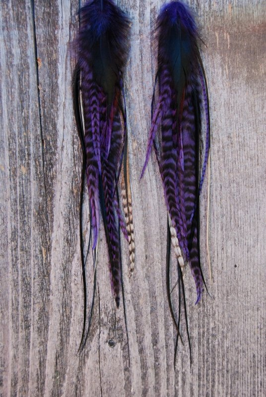 Empower Feather earrings