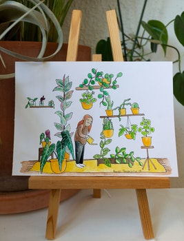 Plantcare