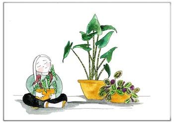 Sweet plants